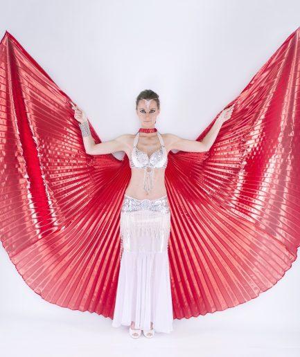 Isis Wings Orient Inside Osiris Rot